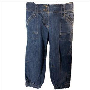Ann Taylor Loft cropped jeans modern
